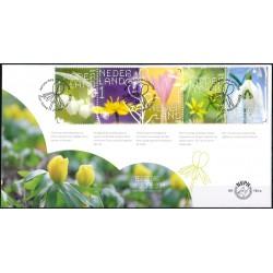 2019 Nederland  2 FDC's | Beleef de Natuur, Stinsenplanten