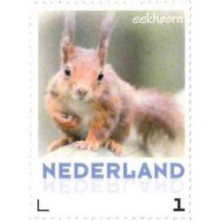 2013 Nederland Persoonlijke postzegel   Eekhoorn