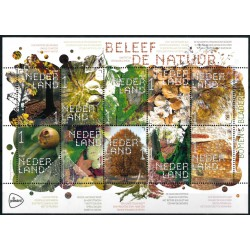 2019 Nederland Vel | Beleef de natuur, Bomen en bladeren