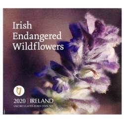 Ierland BU-Set 2020