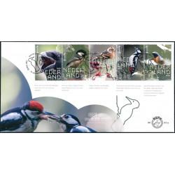 2020 Nederland 2 FDC's   Beleef de natuur - Bos en heidevogels
