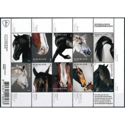2021 Nederland Vel | Nederlandse paardenrassen