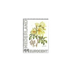 2008 Nederland persoonlijke postzegel | Bloemenpracht (Janneke Brinkman) Juni, Gele roos