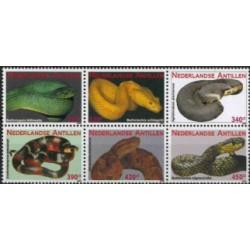 2009 Ned. Antillen Slangen