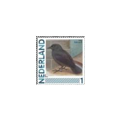 2011 Nederland persoonlijke postzegels | Vogels, Kauw