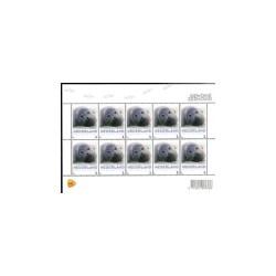 2013 Nederland Vel Persoonlijke postzegels 'Gewone Zeehond'