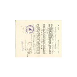 Steenwijk 1 gulden 1914