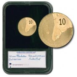 Nederland 10 euro 2009 - Manhattan