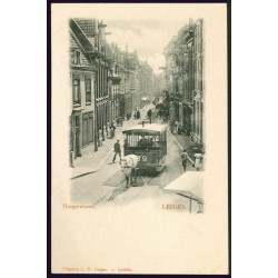 Leiden 24494