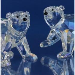 2011 Jonge ijsberen