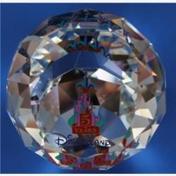 Pesse papier Disney park Parijs 5 jaar, in kleur
