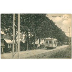 Leiden 25491