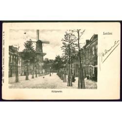 Leiden 24716